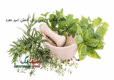 داروهای گیاهی کاهش دهنده اسید معده
