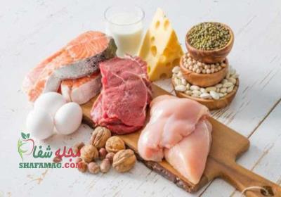 برنامه غذایی رژیم لاغری پروتئین