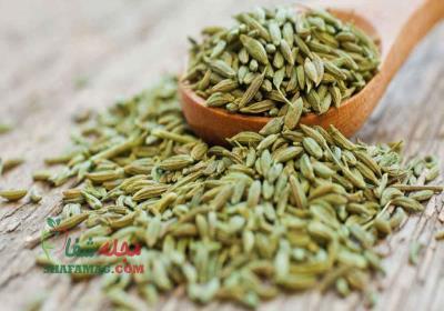 طریقه مصرف زیره سبز برای لاغری شکم