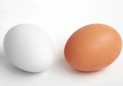 فواید خوردن تخم مرغ در کودکان چیست