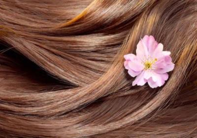 مواد غذایی برای داشتن موهای سالم