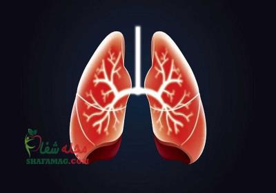 پروتئین کشف شده در ریه برای درمان آسم