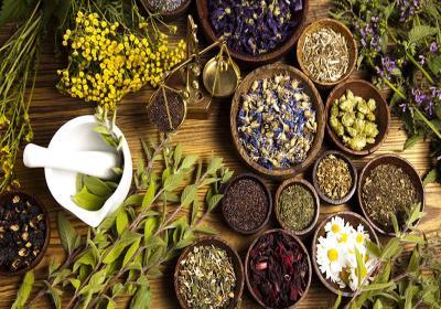 داروی گیاهی برای درمان دل پیچه و اسهال