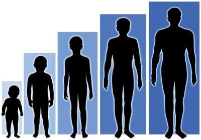 نکات مهم برای افزایش قد