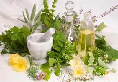 گیاهان دارویی برای رشد مو