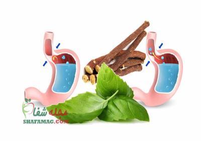 داروی گیاهی جایگزین امپرازول
